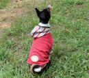 秋色袖付きパーカー(赤)