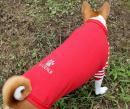 肉球ラグランTシャツ(赤)